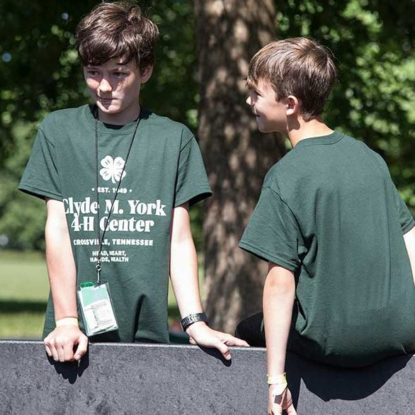 Picture of two boys at a 4-H camp
